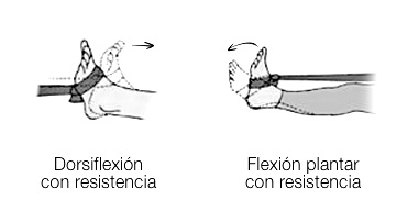 Dorsiflexión con resistencia